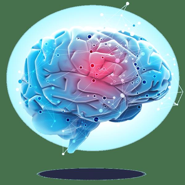 Nemechek Autonomic Medicine Brain Image