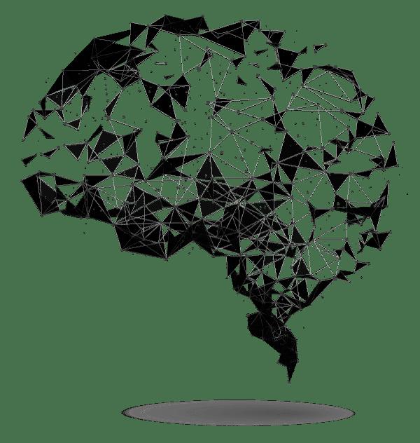 Nemechek Autonomic Medicine Quiz Feature